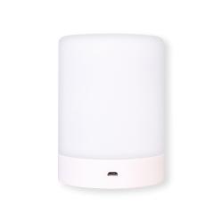 Diffusore Audio Bluetooth con Radio FM e Lampada LED Multicolore