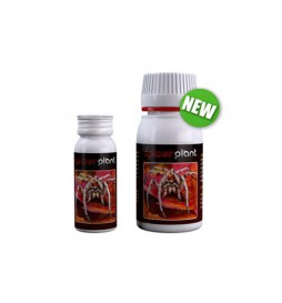 Agrobacterias - Spider Plant - Bio insecticide based on amino acids (15ml)
