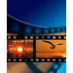 Video Promozionali
