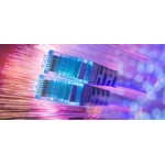 Ethernet Cables and Network Switches
